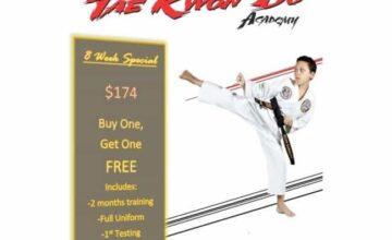 EmmonsTaekwondo-blog-image-emmons-taekwondo-bogo-2015