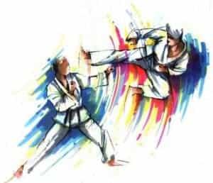 EmmonsTaekwondo-blog-image-florida-regional-camp