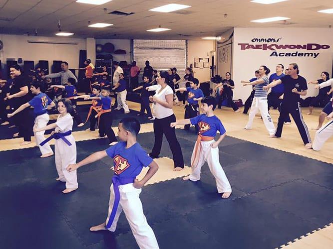 EmmonsTaekwondo-programs-image-juniors