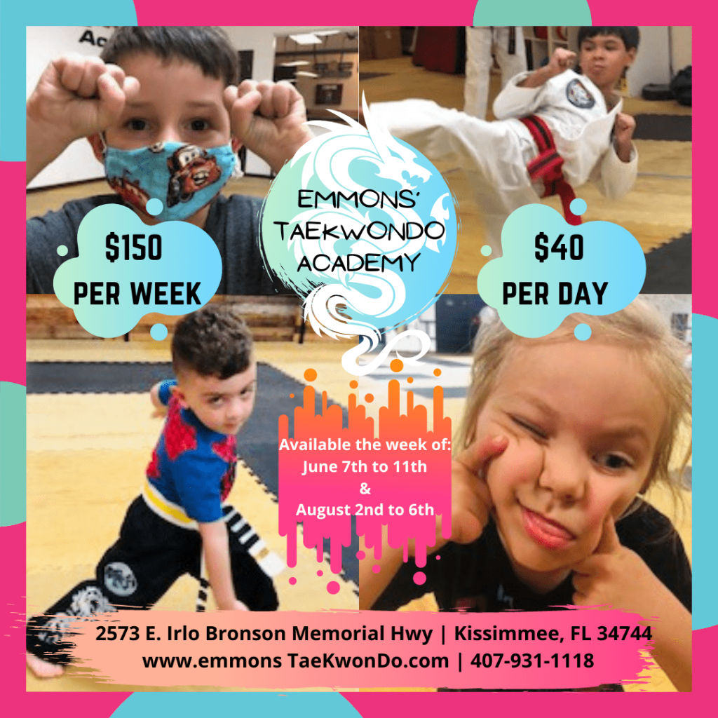 Emmons-Taekwondo-summer-camp