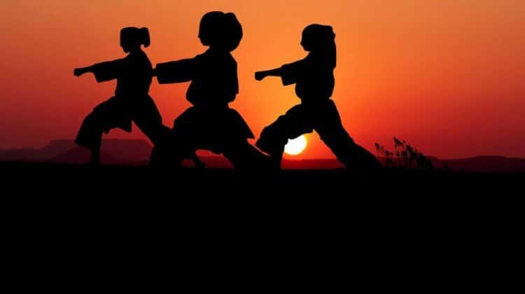 EmmonsTaekwondo-programs-background-image1
