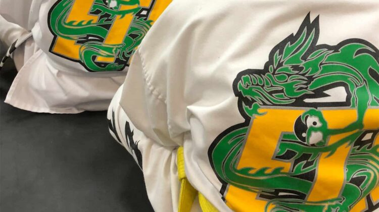 EmmonsTaekwondo-homepage-slider-image2